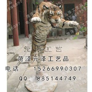 展览动物系列